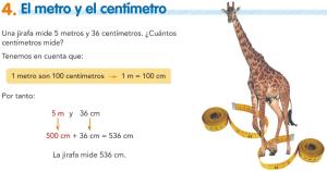T11.4. El metro y el centímetro
